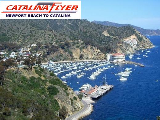 Catalina Flyer Newport Great Work Perks