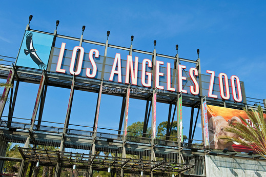 LA Zoo - Save Up To 25%